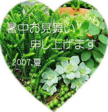 Photo008