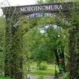 MOEGINOMURA